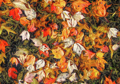 Fall Autumn Leaves On Water Poster by Randy Steele
