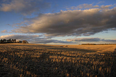 Farm And Stubble In Fall Poster by Dan Jurak