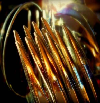 Flames Of Bronze Poster by Karen Wiles
