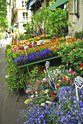 Flower Stand In Paris Poster by Elena Elisseeva