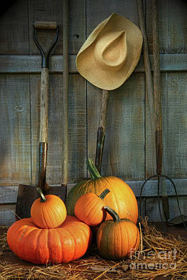 Garden Tools In Shed With Pumpkins Poster by Sandra Cunningham