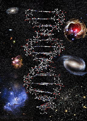 Genetic Universe Poster by Victor De Schwanberg
