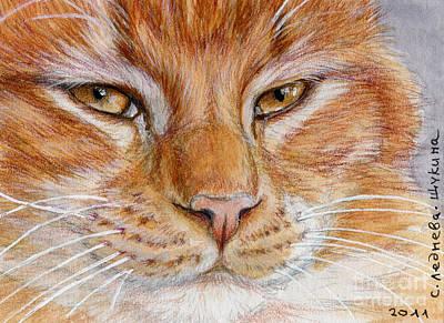 Ginger Cat  Poster by Svetlana Ledneva-Schukina