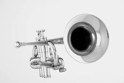 Gold Trumpet Isolated On White Poster by M K  Miller