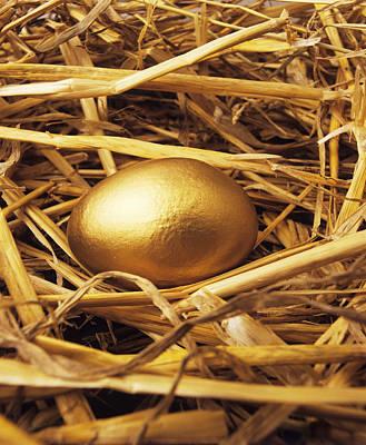Golden Egg Poster by Tony Craddock