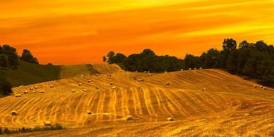 Golden Tennessee Hay Field By Randall Branham Poster by Randall Branham