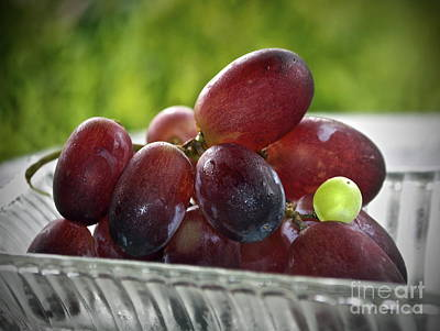 Grapes Poster by Gwyn Newcombe