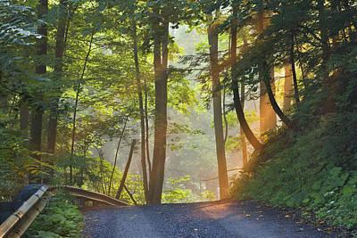 Gravel Road At Sunrise, Pelham, Ontario Poster by Darwin Wiggett