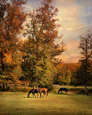 Grazing In Autumn Poster by Jai Johnson
