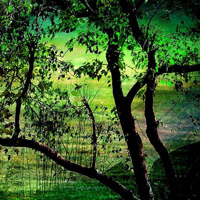 Green Poster by Shirley Sirois