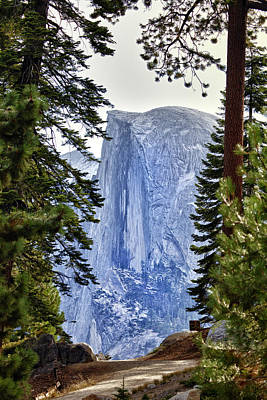 Half Dome Through The Trees Poster by Rick Berk