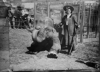 Hattie Snyder, Elephant Trainer Poster by Everett