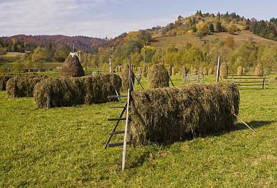 Hay Racks And Stooks, Romania Poster by Bob Gibbons