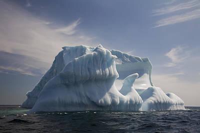 Iceberg, Quirpon Island, Newfoundland & Poster by John Sylvester
