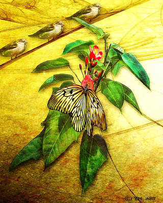Insect - Butterfly - Sparrow - Happy Summer  Poster by Yvon van der Wijk