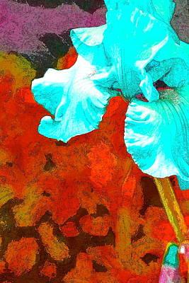 Iris 33 Poster by Pamela Cooper