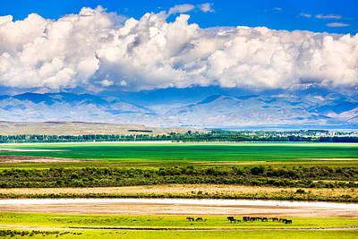 Keerkante Grassland, Zhaosu, Xinjiang China Poster by Feng Wei Photography