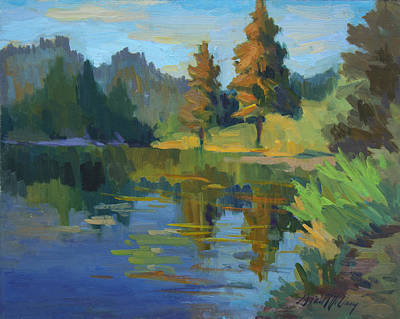 Late Afternoon Light At Harry's Pond Poster by Diane McClary