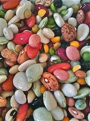Legumes Poster by Marie Naturally