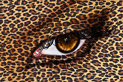 Leopard Poster by Yosi Cupano