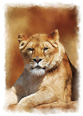 Lioness Portrait Poster by Michael Greenaway