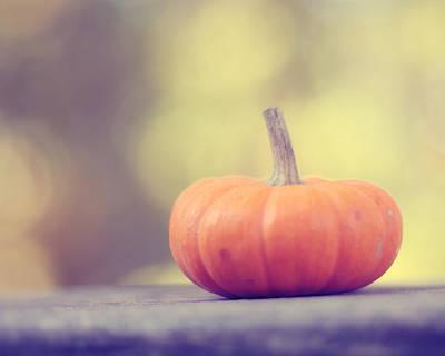 Little Pumpkin Poster by Amy Tyler
