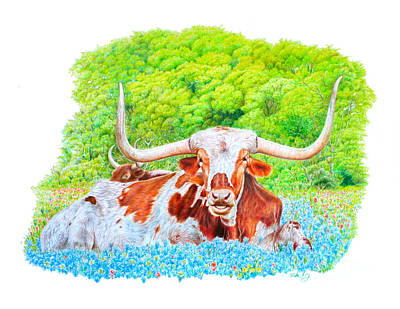 Longhorns In Bluebonnets Poster by Mike Ivey