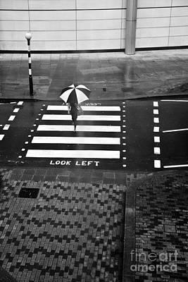 Look Left Poster by Linda Wisdom
