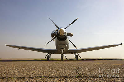 Low Angle View Of An Iraqi Air Force Poster by Terry Moore
