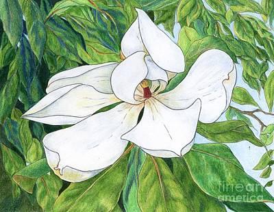 Magnolia Poster by Linda Battles