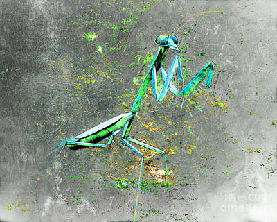 Mantis 1 Poster by Arne Hansen