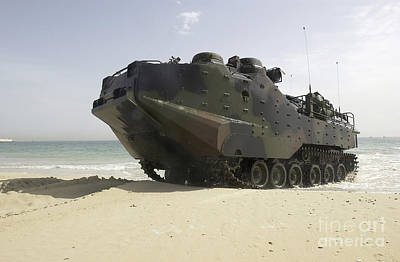 Marines Navigate An Amphibious Assault Poster by Stocktrek Images