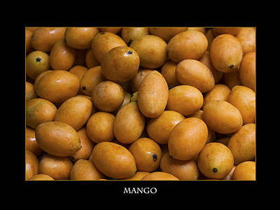 Market Mangoes Against Black Background Poster by Zoe Ferrie