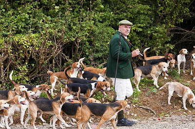 Master Of The Hounds, Fox Hunt, Devon, England Poster by Peter Adams