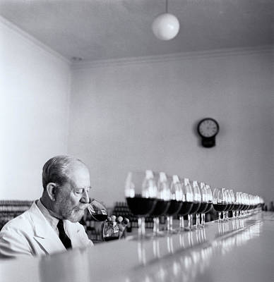Mature Wine Tester With Row Of Glasses (b&w) Poster by Hulton Archive