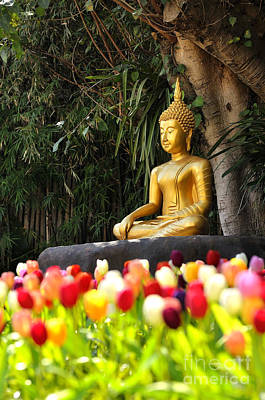 Meditation Buddha Statue In Tulips Garden Under The Bodhi Tree. Poster by Panupong Roopyai