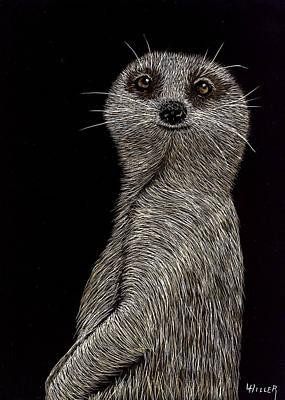 Meerkat On Watch Poster by Linda Hiller