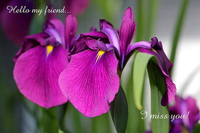 Miss You Poster by Deborah  Crew-Johnson