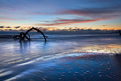 Morning Calm At Driftwood Beach Poster by Debra and Dave Vanderlaan