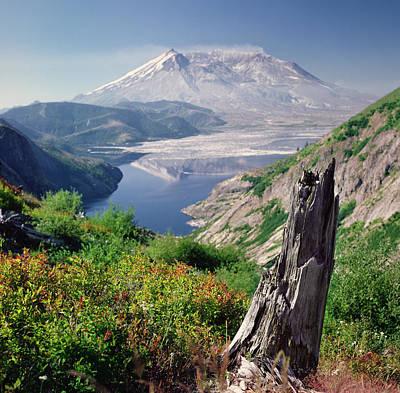 Mt. St. Helens Poster by Danielle D. Hughson