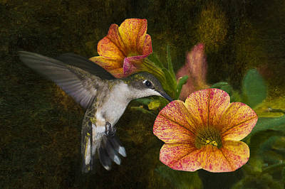 Mystical Flight Poster by Steven Richardson