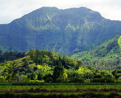 Namolokama And Waioli Falls Kauai Poster by Kevin Smith