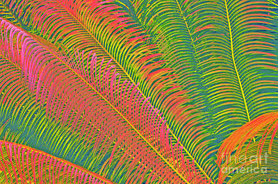 Neon Palm Abstract Poster by Cindy Lee Longhini