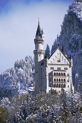 Neuschwanstein Castle Poster by Anthony Citro