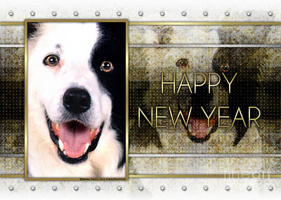 New Year - Golden Elegance Border Collie Poster by Renae Laughner