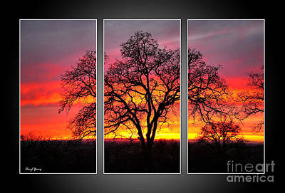 Oak Silhouette Tryptych 1 Poster by Cheryl Young