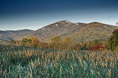 Old Rag Mountain Autumn Scene - Virginia Poster by Brendan Reals