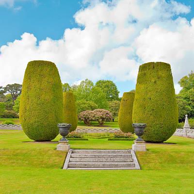 Ornamental Garden Poster by Tom Gowanlock