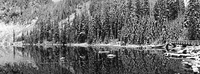 Panorama Of Snow Covered Pines Poster by Twenty Two North Photography