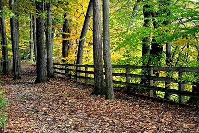 Peaceful Pathway Poster by Frozen in Time Fine Art Photography